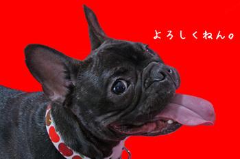 Ushio_